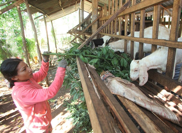 Ben Tre province gives support for poverty reduction