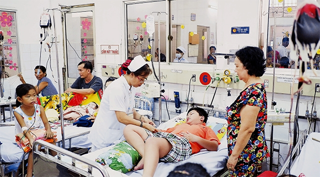 Ho Chi Minh city mobilizes all resources to fight dengue fever