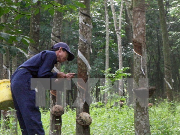 Thailand promotes use of rubber