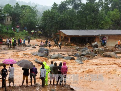 Over 300 killed due to landslide in Sierra Leone