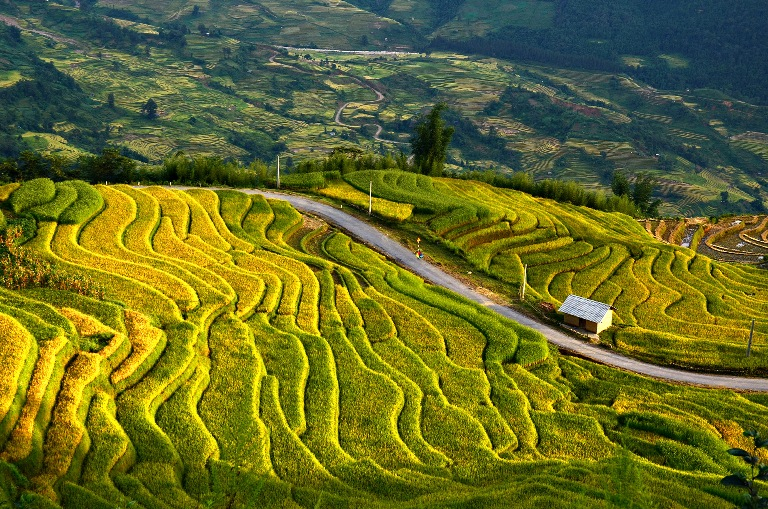 Lao Cai to host 2017 Autumn Festival in late August
