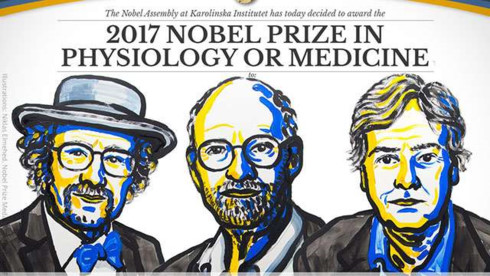 2017 Nobel Prize in Physiology or Medicine goes to three US citizens