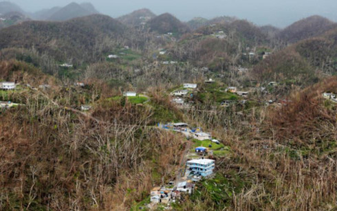 US House of Representatives approves USD36.5 billion for disaster relief