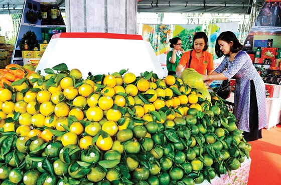 Regional specialties on show in Ho Chi Minh city