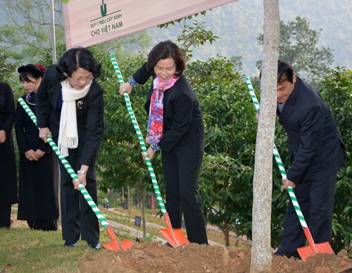 Over 80,700 trees planted at Pac Bo special national relic site