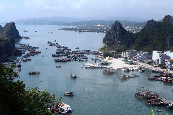 Quang Ninh needs special administrative-economic unit