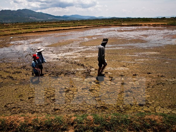 National Mekong Committee urged to promote role in regional growth