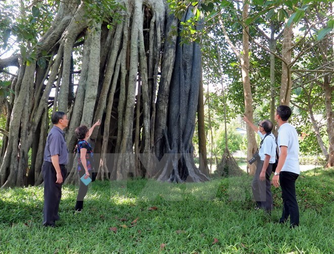 PM approves plan to develop Tan Trao tourism site