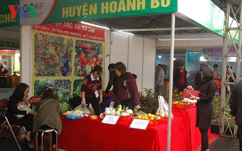 Vietnam-China tourism, trade fair greets over 30,000 visitors