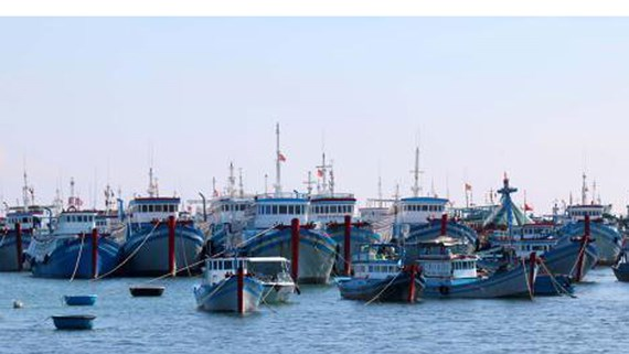 Binh Thuan province allocates VND27 billion for offshore fishing vessels
