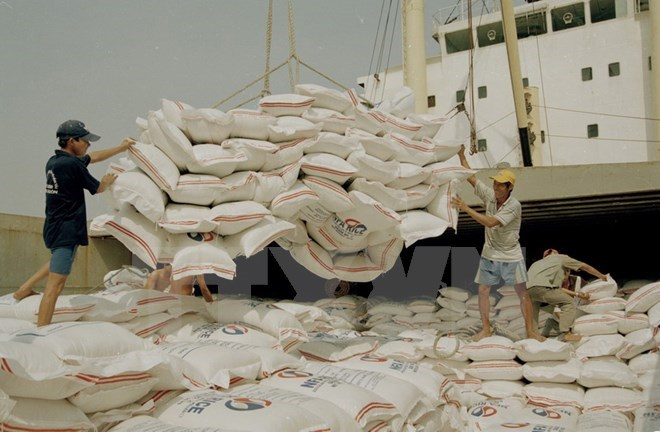 Indonesia to import rice from Vietnam to curb price hikes