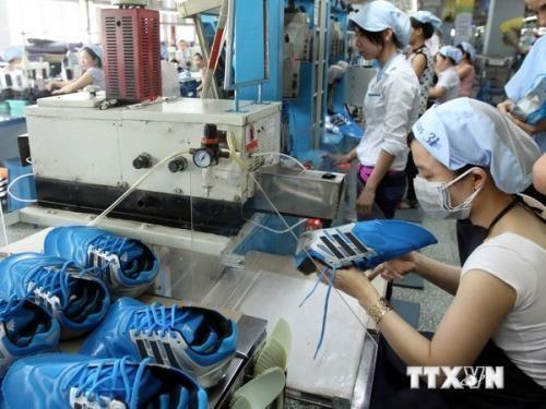 Leather, footwear sector targets USD20 billion in export earnings