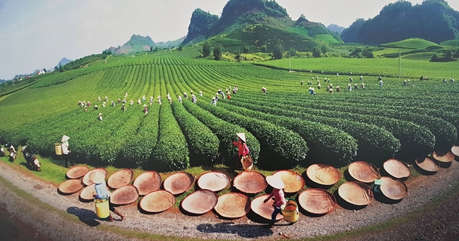 Exhibition on Vietnamese land and people