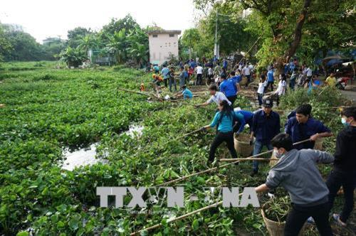Ho Chi Minh city's young people actively protect environment