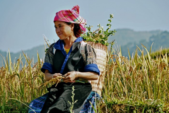 Recommendations to transform the lives of Vietnamese women in rural