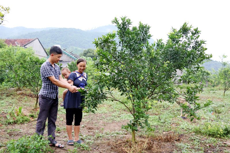 Quang Ninh province: Northern district boosts poverty reduction
