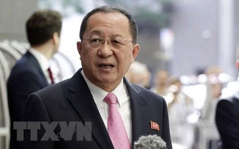 DPRK's Minister Ri Yong-Ho visits Sweden