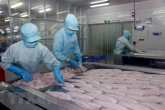 Ministry urges US to study Vietnamese tra fish market