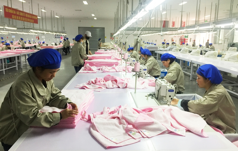 Quang Ninh: Nearly 600 enterprises formed in first quarter