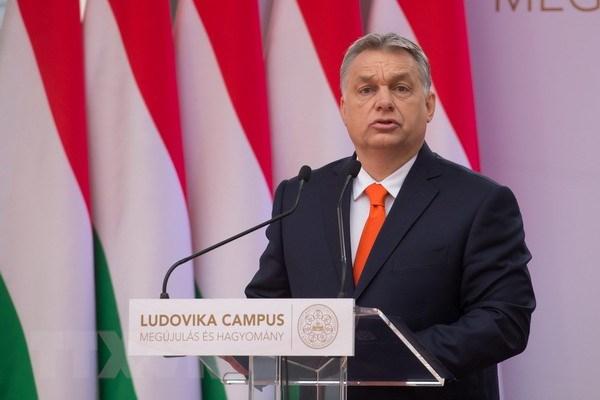 Hungary's Viktor Orban declares victory