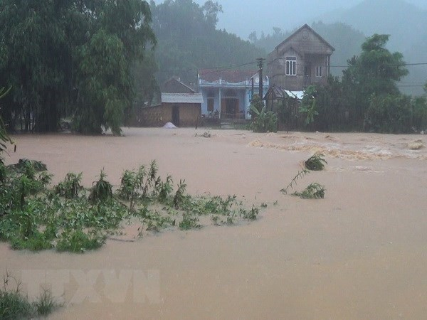 Casualties, missing victims from torrential rains, floods mounts to 63