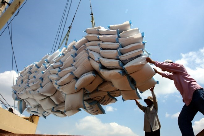 Vietnam's rice exports on the rise