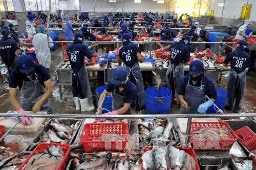 Seafood exports fetch USD4.63 billion in seven months