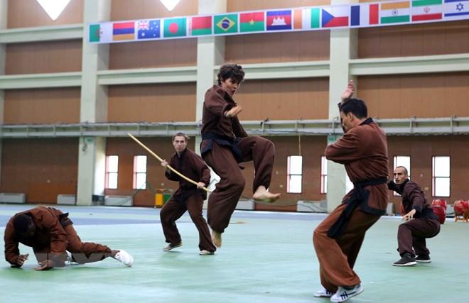 43 delegations compete in 2nd Vovinam World Championships