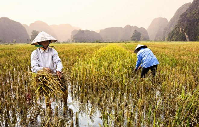 Vietnam among Top Destinations for Gap year