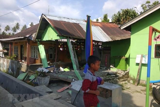 No Vietnamese victims reported in Indonesia quakes, tsunami