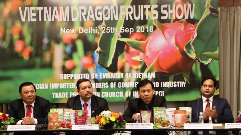 Binh Thuan dragon fruit promoted in Indian market