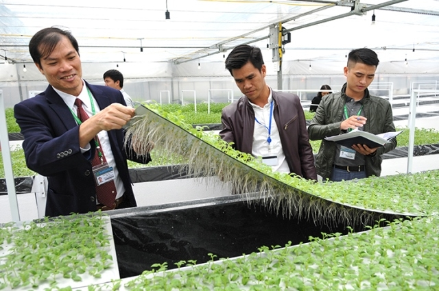 Vietnam, RoK cooperate in hi-tech agricultural production