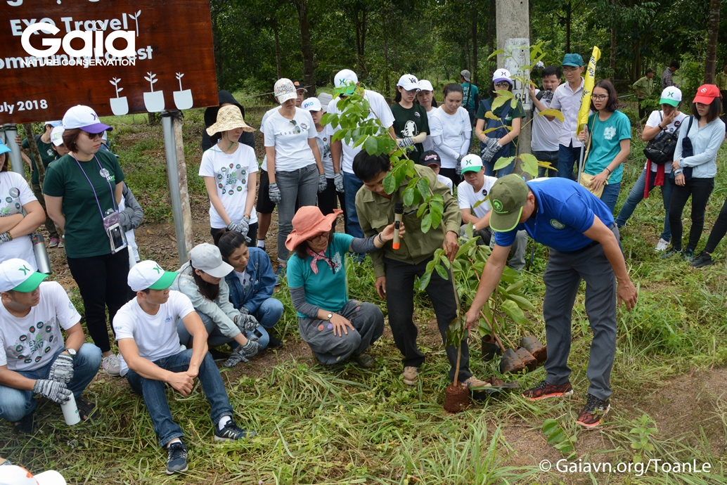 Young people help spread green tourism
