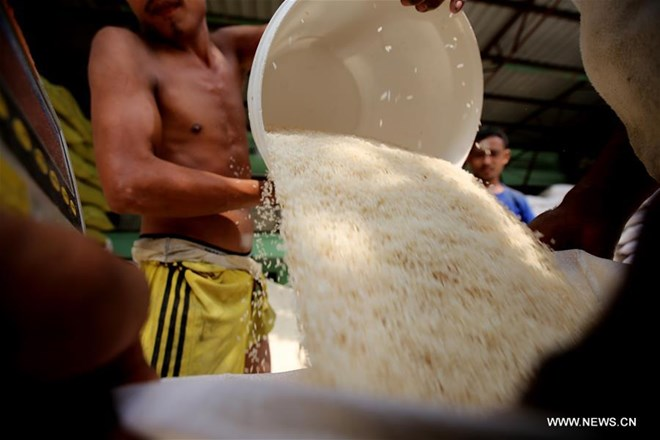 Myanmar earns almost USD436 million from rice exports