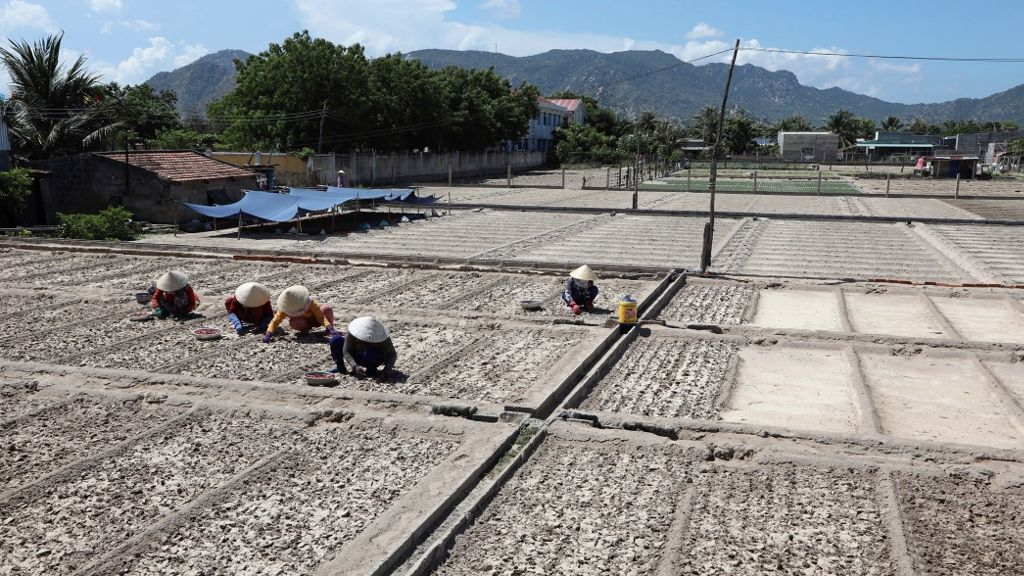 Viet Nam installs eight modernized irrigation systems in five drought-affected provinces