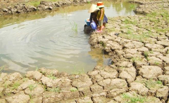 Netherlands helps to improve water supply capacity in Mekong Delta