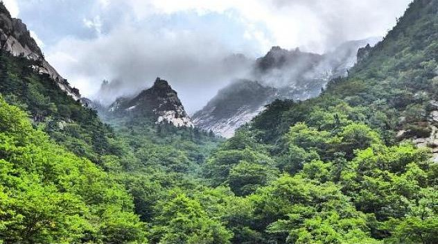 Two Koreas mark 20th anniversary of Mount Geumgang tour