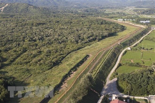 DPRK destroys 10 guard posts in border area