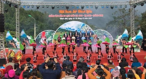 """So"" Flower Fesitval 2018 in Quang Ninh"