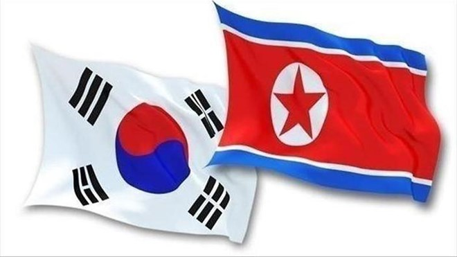 Two Koreas discuss joint efforts to combat infectious diseases