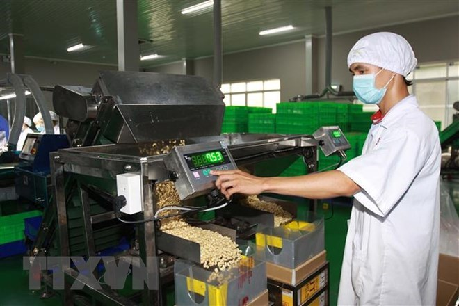 CPTPP brings opportunities, challenges to Vietnam's agriculture