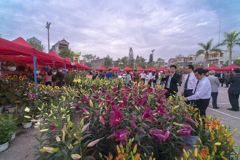 Hoanh Bo Spring Flower Festival 2019 to be opened