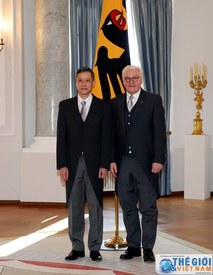 Ambassador Nguyen Minh Vu presents letter of credence to German President