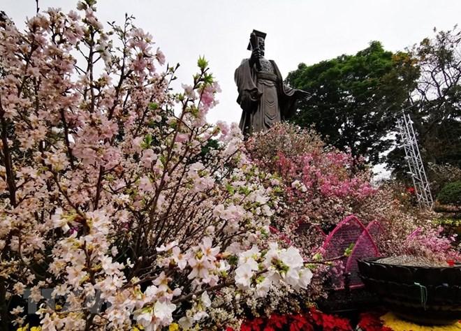 Japanese cherry blossom festival opens in Hanoi
