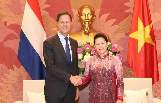 Vietnam – Netherlands relationship develops well in all areas