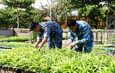 Agricultural production on Spratly Islands