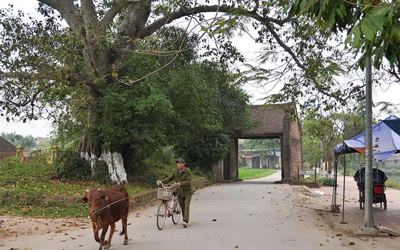Unique Duong Lam ancient village