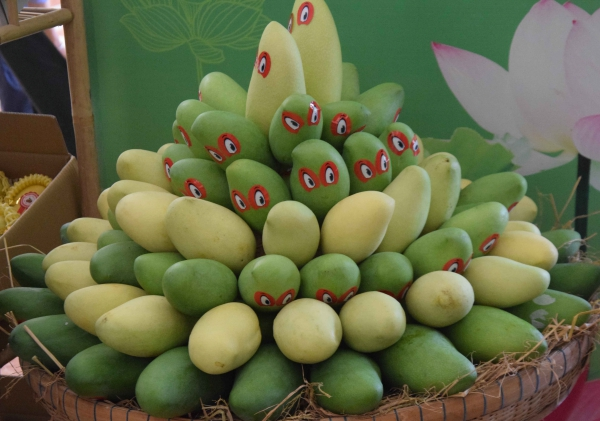 Vietnam exports first batch of mangoes to US