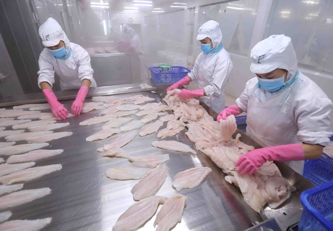 Japan among top 10 importers of Vietnam's tra fish for first time