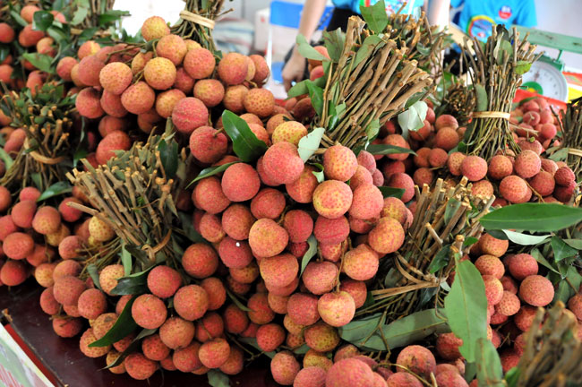 Bac Giang specialty litchi on show in Hanoi